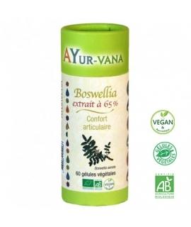 Boswellia 65% Bio - AYUR-VANA